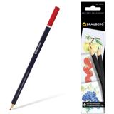 Карандаши цветные BRAUBERG (БРАУБЕРГ) «Artist line», 6 цветов, черный корпус, заточенные, высшее качество