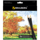 Карандаши цветные BRAUBERG (БРАУБЕРГ) «Artist line», 24 цвета, черный корпус, заточенные, высшее качество