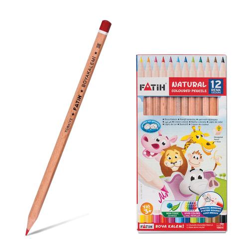 Карандаши цветные PENSAN (FATIH), 12 цветов, заточенные, некрашеный корпус, картонная упаковка