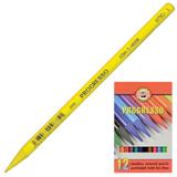Карандаши цветные KOH-I-NOOR «Progresso», 12 цветов, грифель 7,1 мм, в лаке, без дерева, заточенные, картонная упаковка