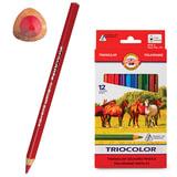 Карандаши цветные KOH-I-NOOR «Triocolor», 12 цв., трехгранные, утолщенные, грифель 5,6 мм, заточенные, картонная упак. с европод.