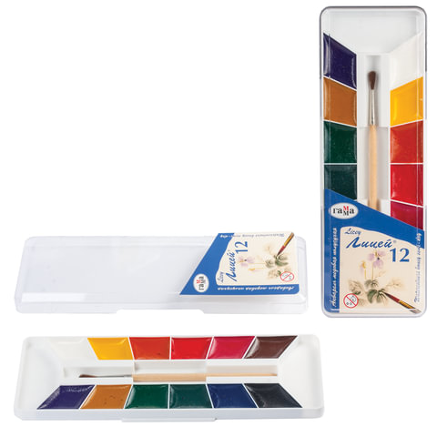 Краски акварельные ГАММА «Лицей», 12 цветов, пластиковая коробка с европодвесом, с кистью
