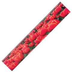 Линейка 3D, 30 см, BRAUBERG, объемная, «Красные тюльпаны», европодвес