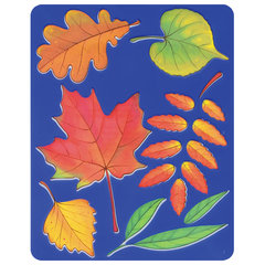 Трафарет-раскраска ЛУЧ «Листья деревьев», 165 мм х 205 мм