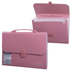 Портфель пластиковый BRAUBERG, А4, 327×254×30 мм, стандартная фактура, 13 отделений, пластиковый индекс, розовый