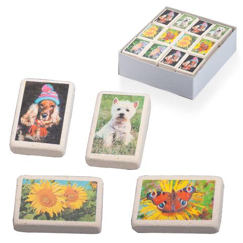Резинка стирательная KOH-I-NOOR «Ассорти животные», прямоугольная, 35×23×8 мм, картонный дисплей
