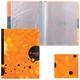 Папка 20 вкладышей HATBER HD, «iFRESH-апельсин», 0,9 мм