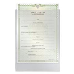 Папка-файл для свидетельства о рождении, 190×263 мм, без отверстий, 0,12 мм, «ДПС»
