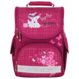 ����� TIGER FAMILY (������) �������, 13 �, 34×27×19 ��