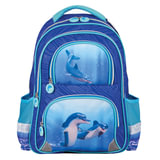 Рюкзак BRAUBERG (БРАУБЕРГ), с EVA спинкой, для учениц начальной школы, «Дельфин», 12 литров, 38×30×14 см