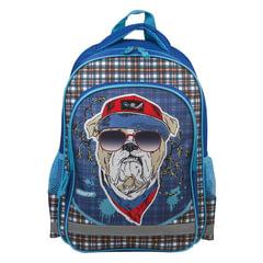 Рюкзак ПИФАГОР для учеников начальной школы, «Бульдог», 38×28×14 см