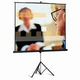 Экран проекционный PROJECTA (Нидерланды) PROFESSIONAL, матовый, на треноге, 213×213 см, 1:1