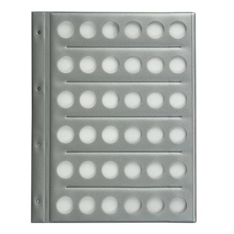 Планшет-вкладыш А4 на 36 монет, ПВХ, с перфорацией, с картонным разделителем для записей, ДПС