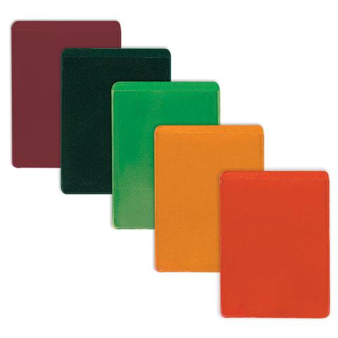 Обложка-карман для проездных документов, ПВХ, ассорти, 69×92 мм, ДПС