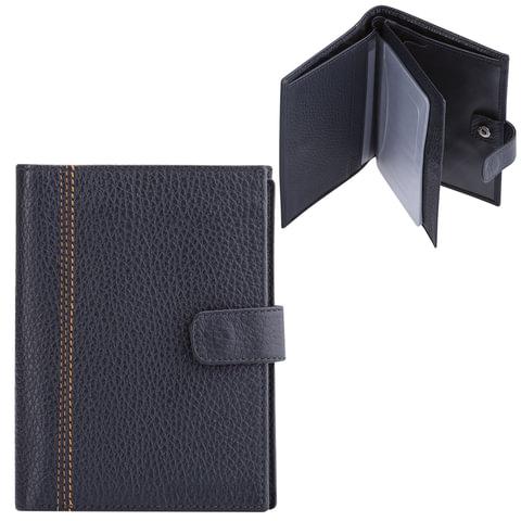 """Бумажник водителя FABULA """"Brooklyn"""", натуральная кожа, отстрочка, 6 пластиковых карманов, синий"""