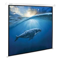 Экран проекционный BRAUBERG MOTO, матовый, настенный, электропривод, 180×180 см, 1:1