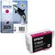 �������� �������� EPSON (C13T76034010) Epson SC-P600, ���������, ������������
