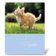 Фотоальбом BRAUBERG (БРАУБЕРГ) на 36 фото 10×15 см, мягкая обложка, котята/<wbr/>щенки, ассорти