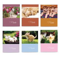 Фотоальбом BRAUBERG на 36 фото 10×15 см, мягкая обложка, котята/<wbr/>щенки, ассорти