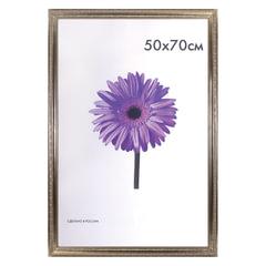 Рамка премиум 50×70 см, «Dorothy», пластик, серебро (для студийных и оформительских работ)