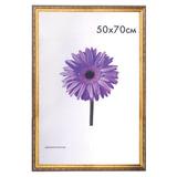 Рамка премиум 50×70 см, «Dorothy», пластик, золото (для студийных и оформительских работ)