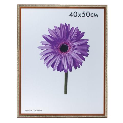 Рамка премиум 40×50 см, «Rosa», пластик, бронза (для студийных и оформительских работ)