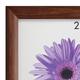 Рамка премиум 21×30 см, «Berta», дерево, орех (для дипломов, сертификатов, грамот, фотографий)
