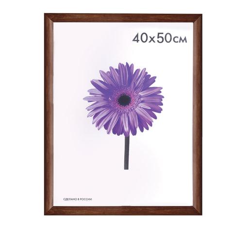 """Рамка премиум 40х50 см, """"Berta"""", дерево, орех (для студийных и оформительских работ)"""