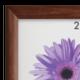 Рамка премиум 50×70 см, «Berta», дерево, орех (для студийных и оформительских работ)