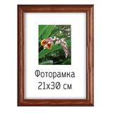 Рамка премиум 21×30 см, «Diana», дерево, орех (для дипломов, сертификатов, грамот, фотографий)
