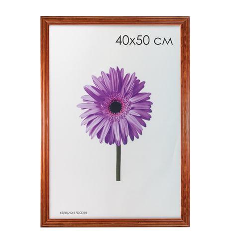 """Рамка премиум 40х50 см, дерево, багет 26 мм, """"Linda"""", орех"""