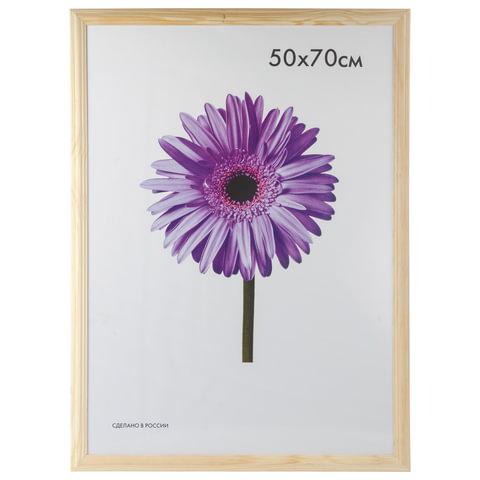 "Рамка премиум 50х70 см, дерево, багет 26 мм, ""Linda"", светлое дерево"