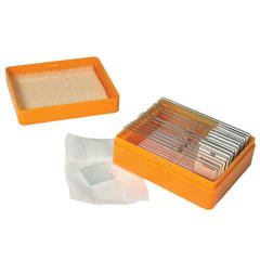 Набор готовых микропрепаратов LEVENHUK N10 NG (10 образцов, стекла)