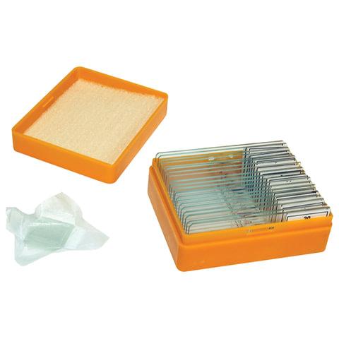 Набор готовых микропрепаратов LEVENHUK N20 NG (20 образцов, стекла)