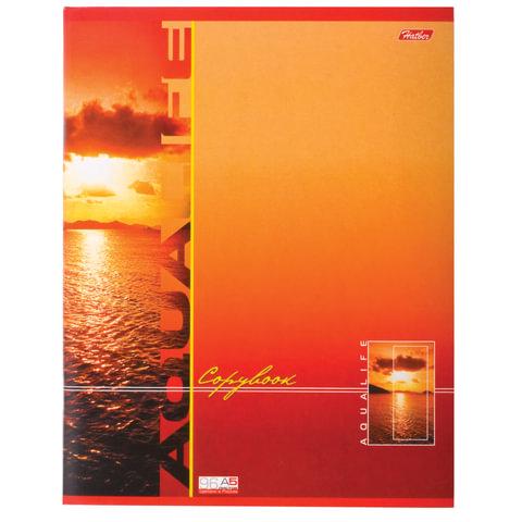 Тетрадь 96 л., HATBER, клетка, мелованный картон обложка, «AquaLife» («Вода»), 96Т5С1