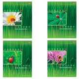 Тетрадь 96 л., HATBER, спираль, клетка, мелованный картон обложка, «Живые моменты»