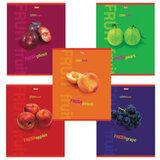 Тетрадь 80 л., А4 HATBER, клетка, выборочный лак, «Fresh Fruit» («Фрукты»), 80Т4влС3