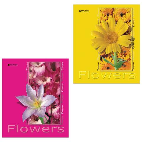 Тетрадь 48 л. BRAUBERG (БРАУБЕРГ) «ЭКО», клетка, обложка мелованный картон, «Цветы», 4 вида