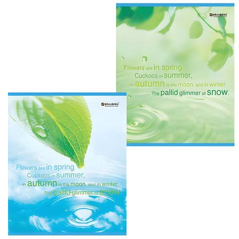 """Тетрадь 48 л. BRAUBERG """"ЭКО"""", клетка, обложка мелованный картон, внутренний блок офсет, """"Экология"""""""