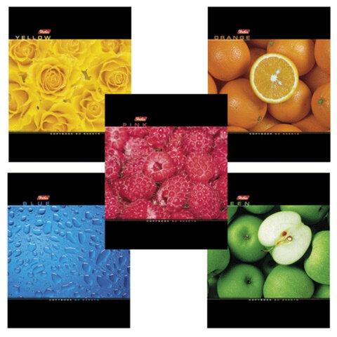 Тетрадь 60 л., HATBER, клетка, выборочный лак, «Colour»