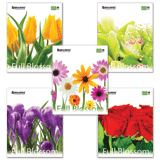 ������� 48 �. BRAUBERG (��������), ������, ������� ���������� ������, «Full Blossom» («�����»), 5 �����