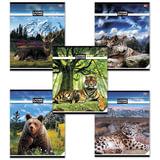 Тетрадь 48 л., HATBER VK, линия, обложка мелованный картон, «Живая природа», 48Т5C2