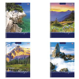 Тетрадь 80 л., А4, HATBER VK, спираль, клетка, обложка мелованный картон, «Удивительный мир»