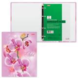 Тетрадь на кольцах, 120 л., HATBER, ламинированная обложка, «Розовая орхидея»
