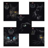 Тетрадь 48 л., HATBER, клетка, выборочный лак, «Royal Cats» (Кошки), 48Т5вмB1