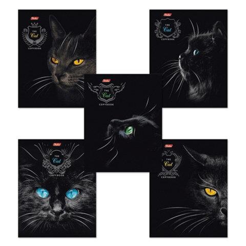 """Тетрадь 48 л., HATBER, клетка, выборочный лак, """"Royal Cats"""" (Кошки), 48Т5вмB1"""
