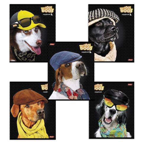Тетрадь 48 л., HATBER, клетка, обложка мелованный картон, «Fashion Dogs» («Собаки»), 48Т5B1