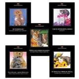 Тетрадь 48 л., HATBER, клетка, обложка мелованный картон, «Демотиваторы — Выпуск № 8», 48Т5B1