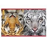 Тетрадь 96 л., HATBER, двойная, клетка, обложка мелованный картон, «Тигр», 96Тд5B1 06497