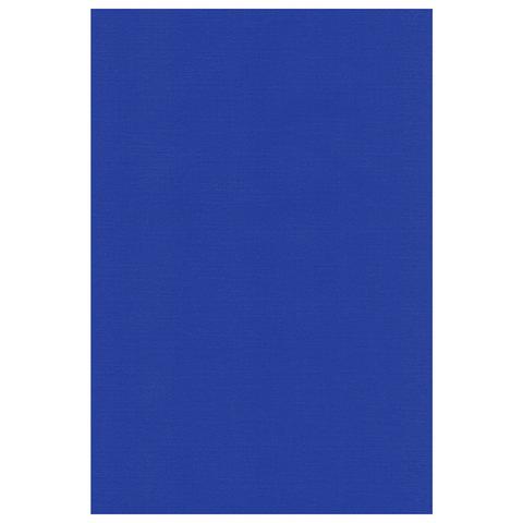 Тетрадь 80 л., А4 HATBER, клетка, полимерная обложка, синяя, 80Т4пмB3